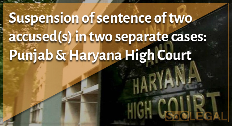 Suspension of sentence of two accused(s) in two separate cases: Punjab & Haryana High Court