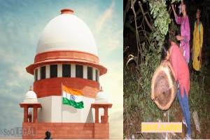 Supreme Court Stays cutting of trees by Maharashtra Government in Aarey Forest